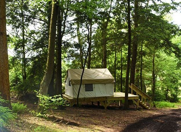 Picture of Hemlock Grove Glamping Site (Peak Friday-Saturday)