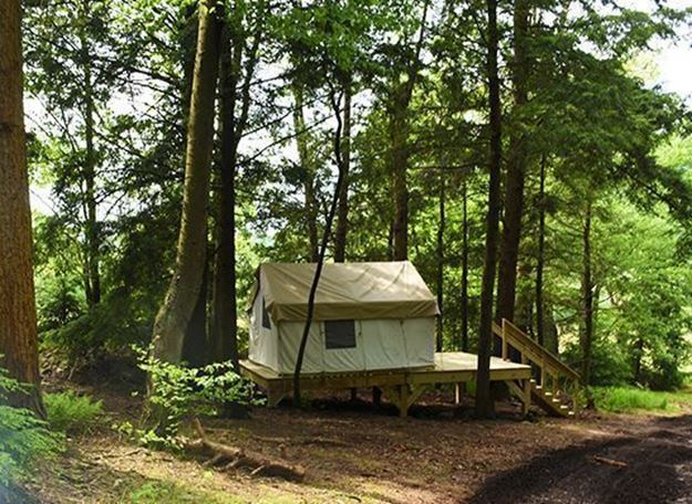 Picture of Hemlock Hangout Glamping Site (Off Peak Sunday-Thursday)