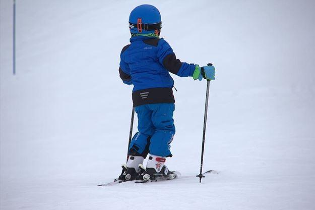 Picture of Developmental Mountaineers 2020/21- Ski