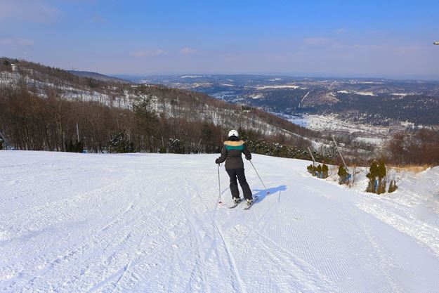 Picture of Private 2 Hour Ski Lesson