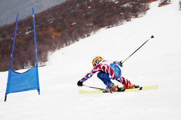Picture of Alpine Ski PARA U16